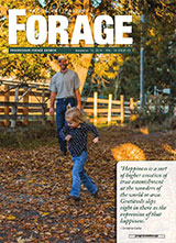 Progressive Forage Grower Issue 10 2015