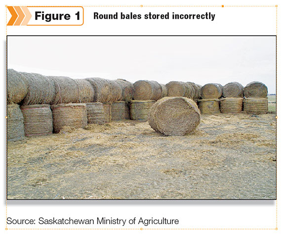 Round Bales D Incorrectly
