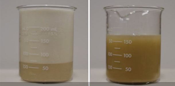 How Does The Ph Of The Solution On The Right Compare With That Of The Solution On The Left