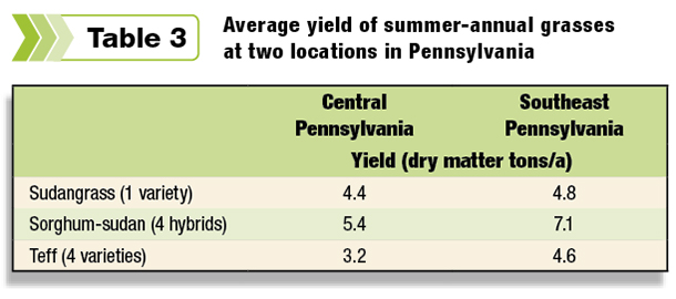 Average yield of summer annual grasses