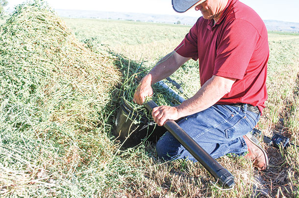 Windrow moisture testing made easy - Progressive Forage