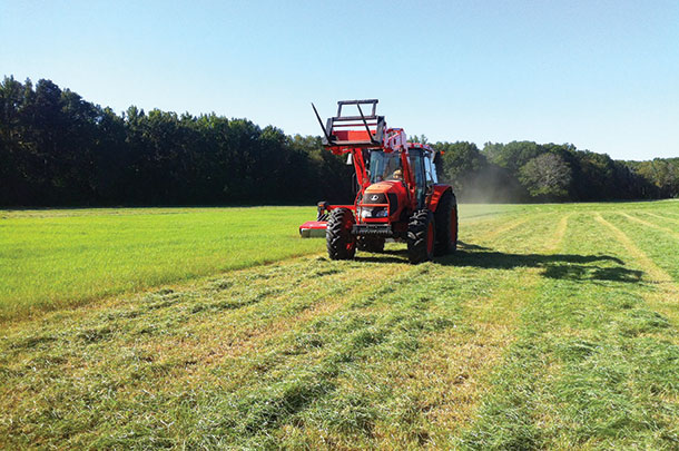 Cutting Tifton 85 hay for horses