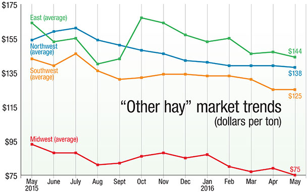 other hay market trends