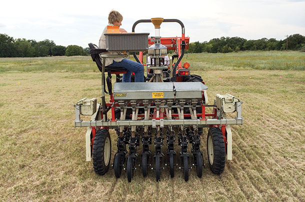 50 cover crop varieties were planted with a no-till drill
