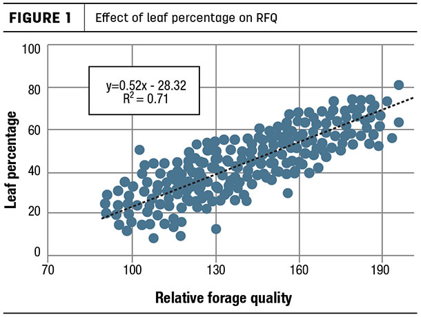 Effect of leaf percentage on RFQ