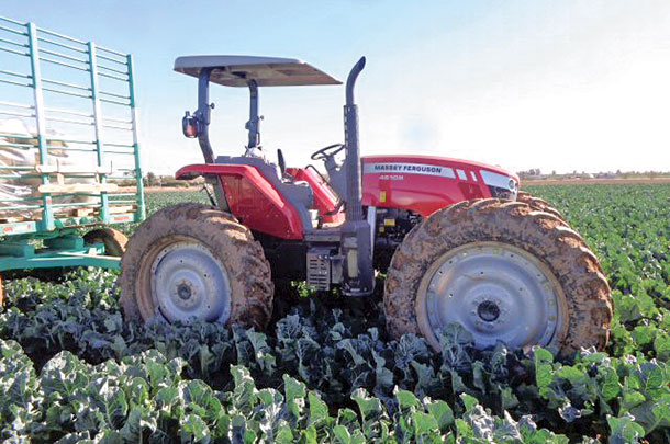 Massey Ferguson high-clearance tractor