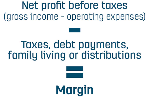 Net profit before taxes