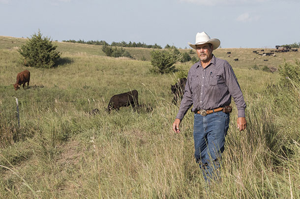 Steve Grudzinski in a pastures grazed by yearling heifers.