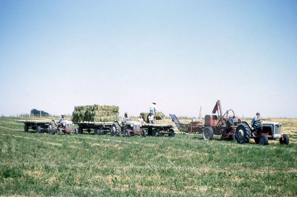 baling in 1957