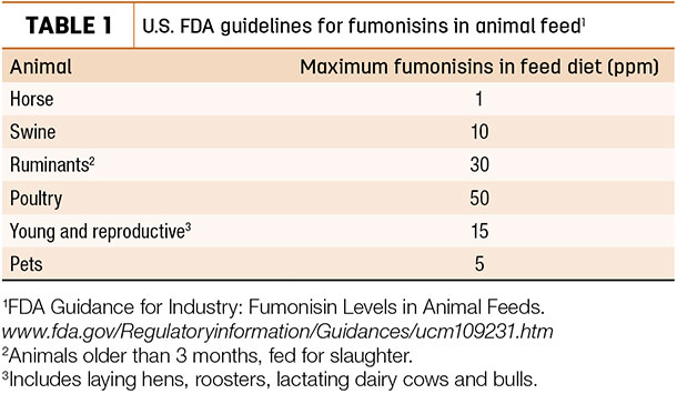U.S. FDA guidelines for fumonisins in animal feed