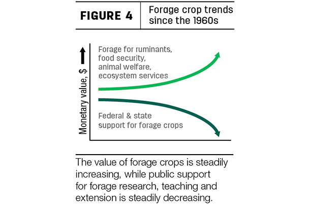 Forage crop trends since the 1960s