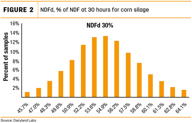 NDFd 96 of NDF at 30 hours ofr corn silage