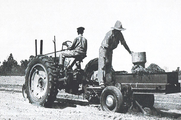 Early commercial sprigger