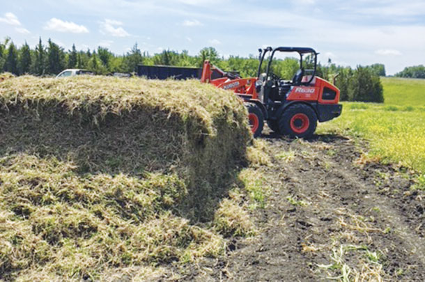 Once cut, sprigs are staged for loading to haul to buyers' fields