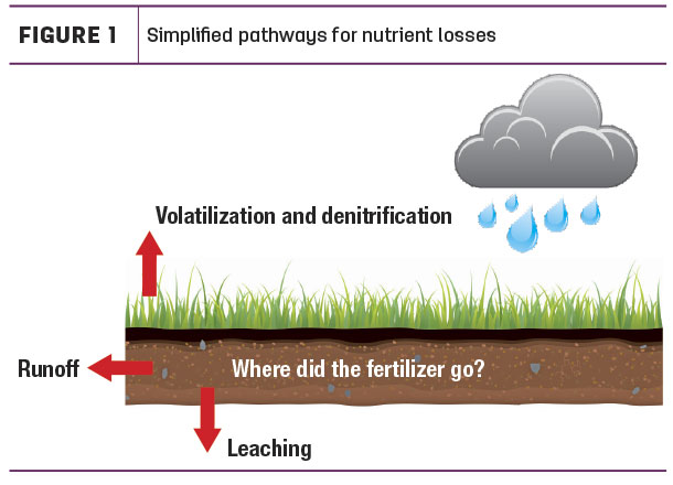 Simplified pathways for nutrient losses