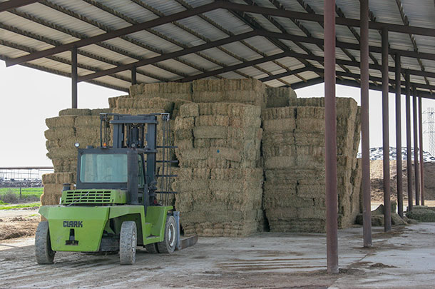 Tips for making better small square bales - Progressive Forage
