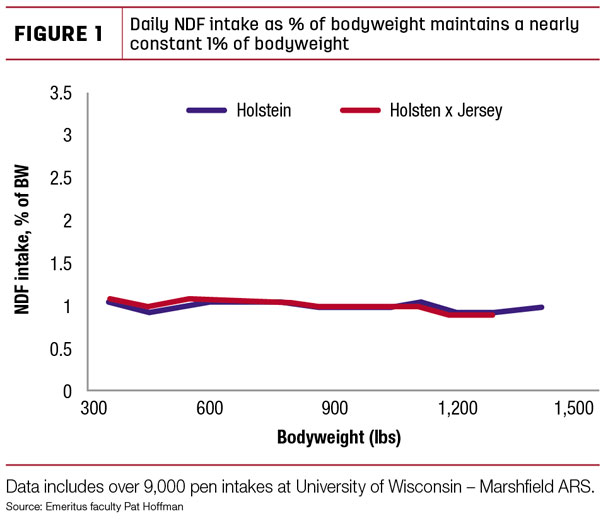 Daily NDF intake as % of bodyweight