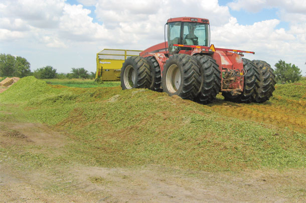 compacting silage