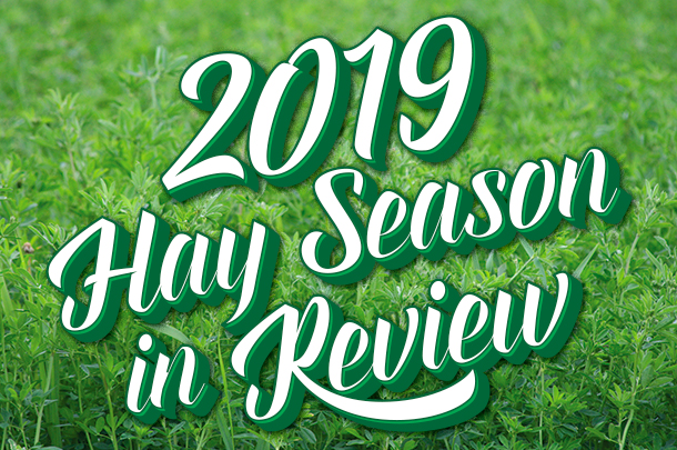 hay review