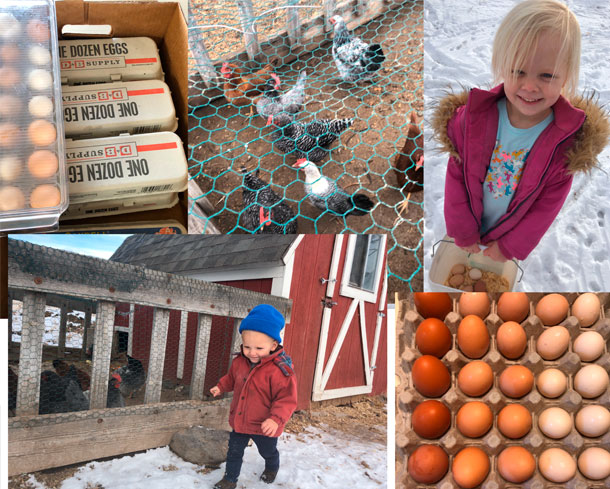 kids and eggs