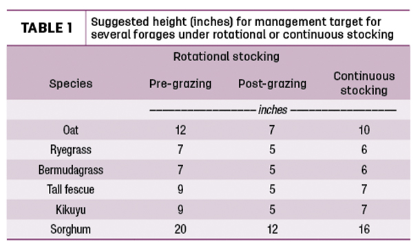 Suggested height (inches) for management target for several forages under rotational or continuous stocking